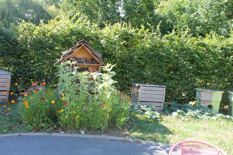 Les fleurs dans le jardin r sidence amodru for Fleurs dans le jardin